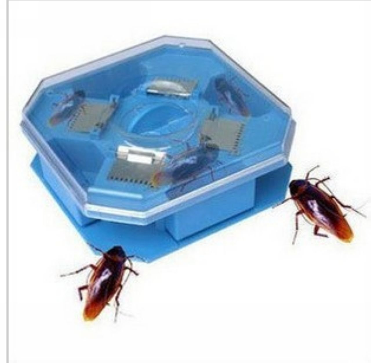 Cheap Cockroach Trap, find Cockroach Trap deals on line at Alibaba.com