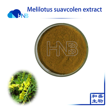 HNB Supply Best Selling Melilotus suavcolen / sweet clover Extract Powder