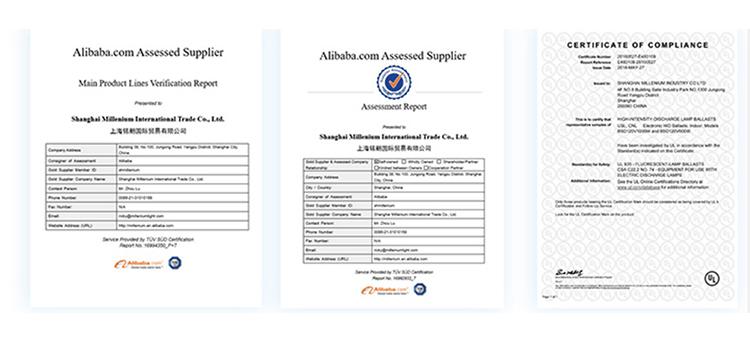 CE FCC Hot Menjual Hidroponik 400 W HPS/MH Tumbuh Cahaya Ballast