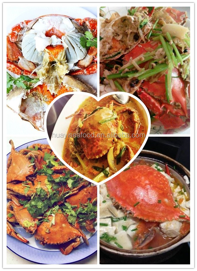 Seafood Live Crab/Live Mud Crab / live blue crab buyer and farm