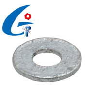 Carbon steel Galvanized/Hot Dipped Galvanized Flat Washers DIN125