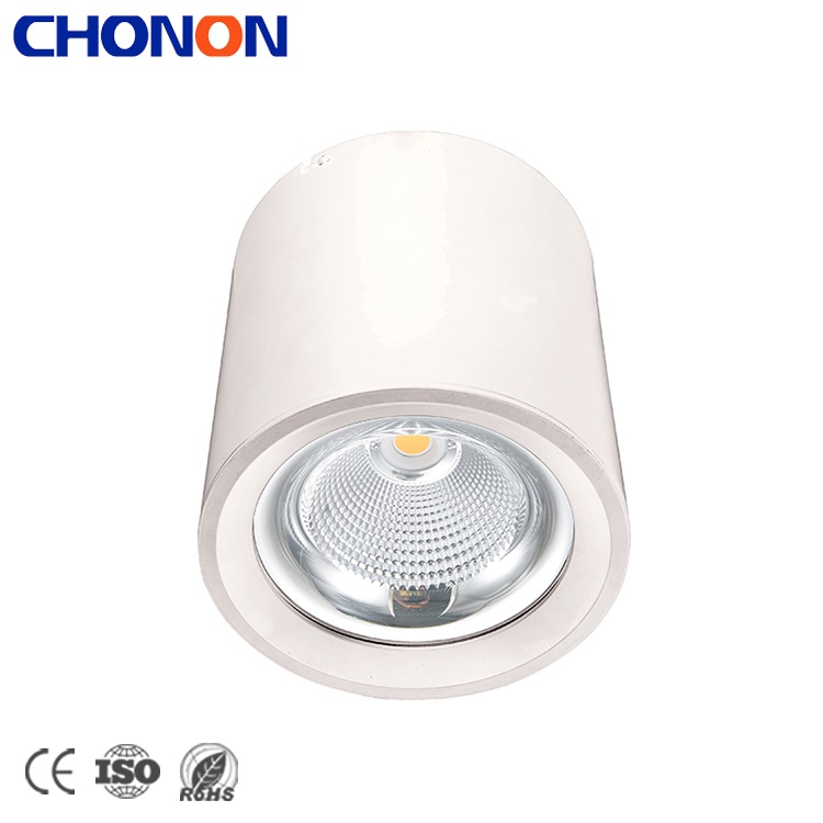 China Surface Mounted Ceiling Down Lamp Dimmable Downlighting COB LED Light Downlight 20 W Price