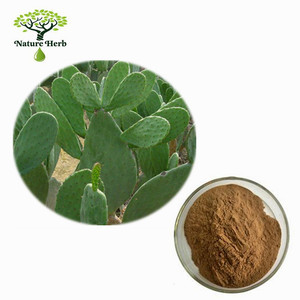 Provide natural Cactus Extract/Prickly pear extract/Hoodia Plant Extract