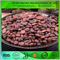 Wild Jujube seed extract / ziziphus jujuba seed extract