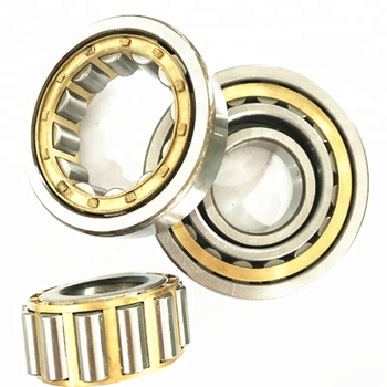 NU309 NUP309 NJ309M Sizes 45*100*25mm Cylindrical Roller Bearing