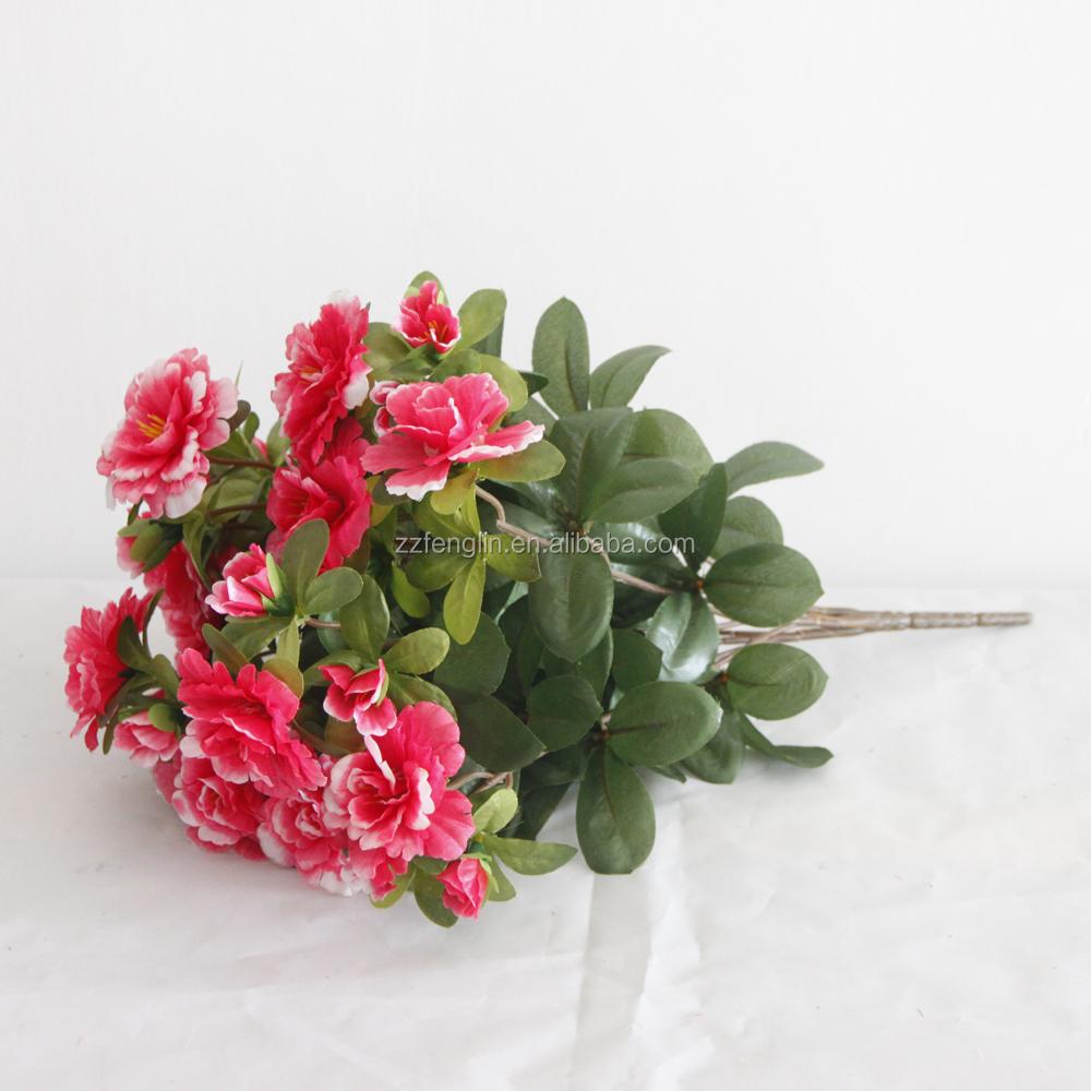 Red Azalea Flower Wholesale Azalea Flowers Suppliers Alibaba