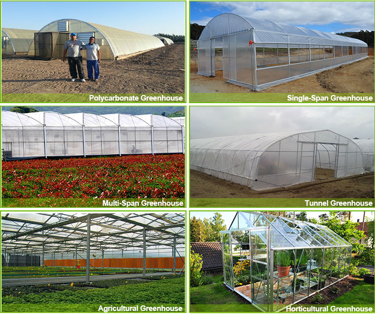 Greenhouse Equipment Co2 Generator Greenhouse Greenhouse