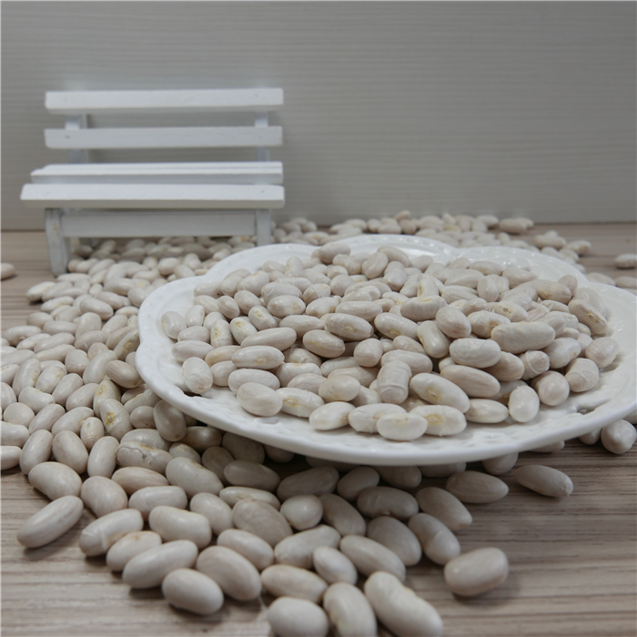 Bulk Dried White Kidney Beans For Canned Food With Best Price