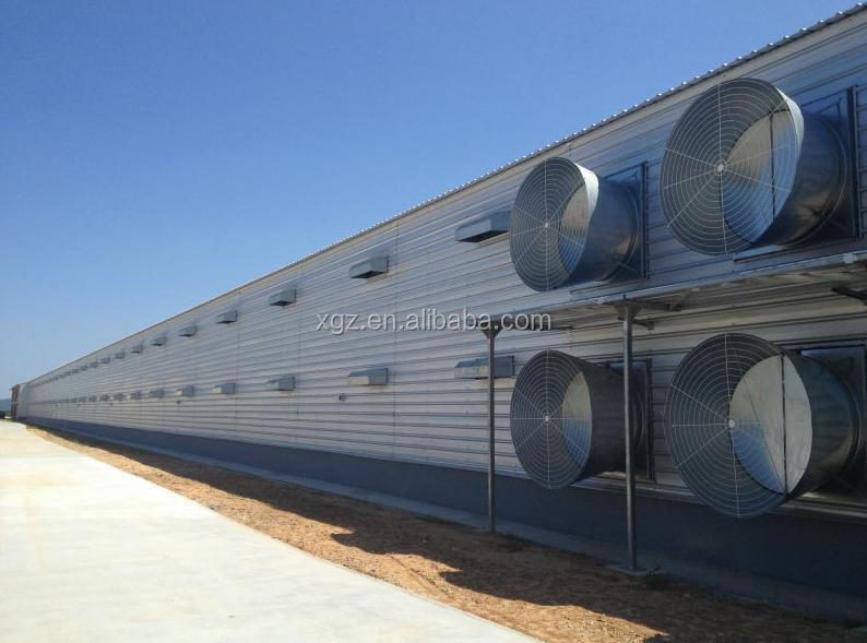 Automatic chicken farm for poultry house