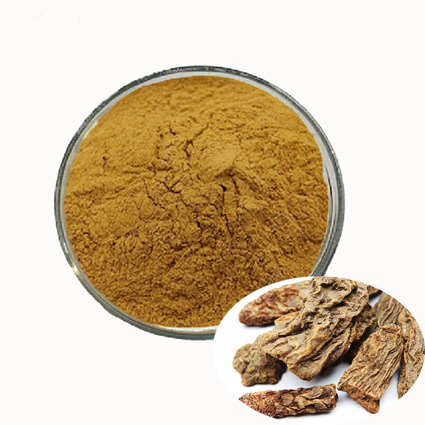 Songaricum แป้ง cynomorium coccineum extract powder