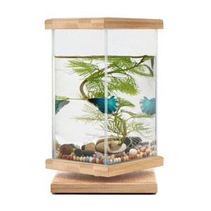 Unique Revolving Desktop 360 Degree Fish Tank with Glass Square Jar - Small Betta Fish Tank Aquarium for Home Office Decoration