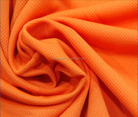 Autumn special 100% cross secondary colour woven plush knit of pure Polyester mesh fabric