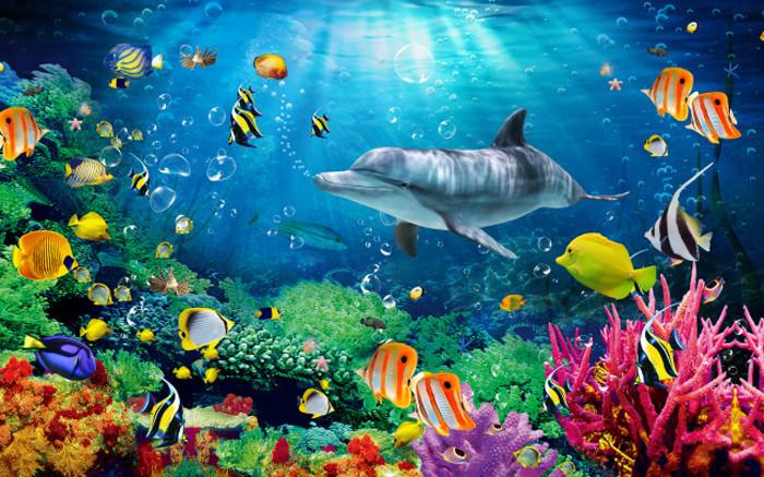 Waterproof Vinyl Wallpaper Undersea World Dolphin Decorative 3d Wall Paper Kids Room Buy Indoor Wallpaper Muralseco Non Woven Wallpapersunderwater