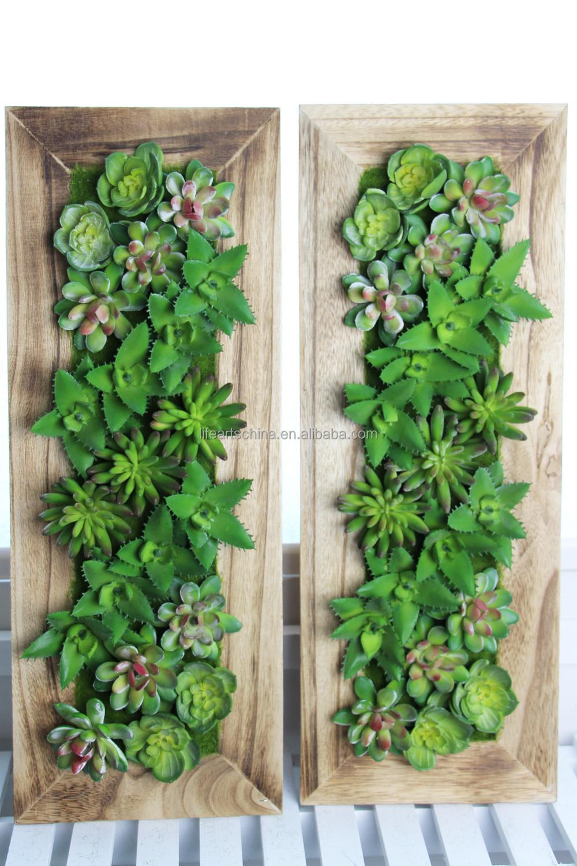 Surtidos Plantas Suculentas Con 50x20 Cm Marco De Madera Maciza ...