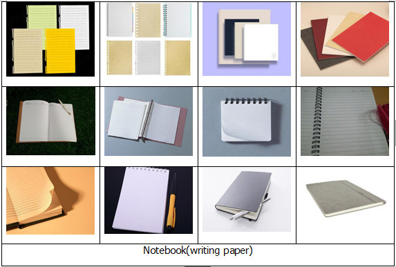 Thesis writing service review