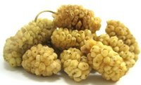Organic and Conventional Dried White Mulberries