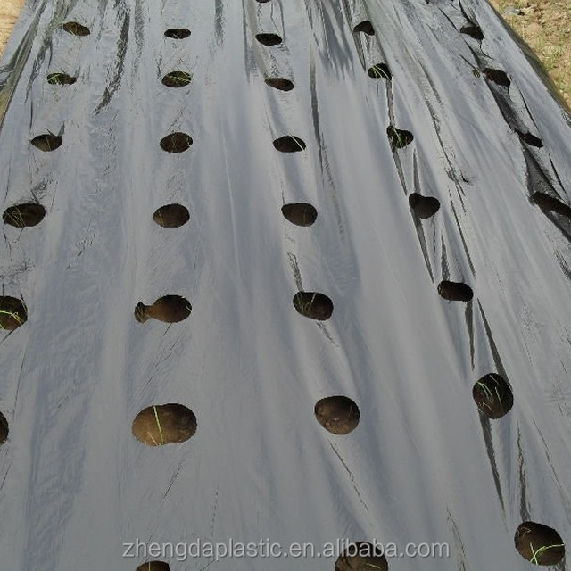 large roll plastic black sliver agriculture mulch film