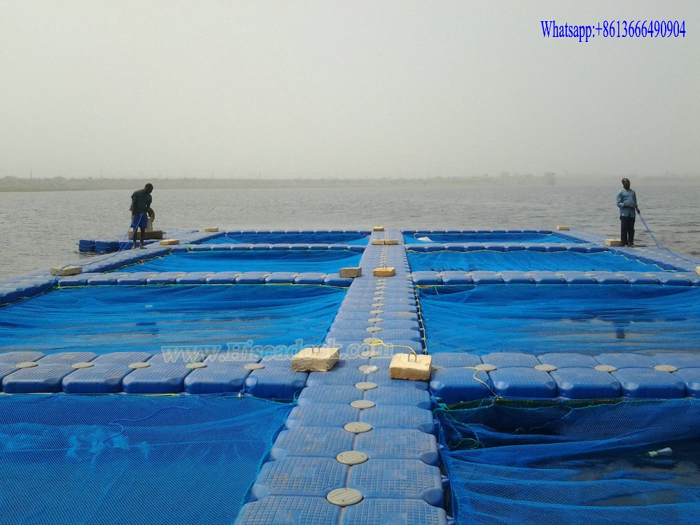 aquaculture fish farming cages buy fish cage floating