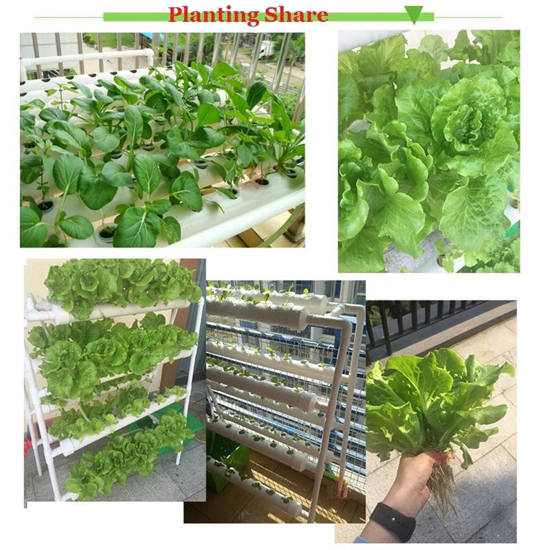 Wholesale Cheap Hydroponic Indoor Vertical Gardening