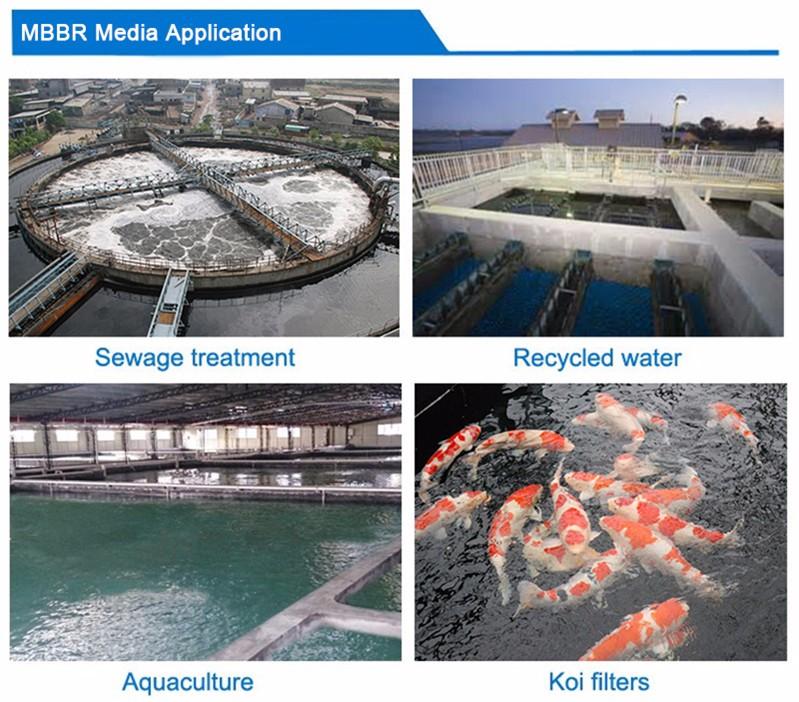 Aquaculture fish farm biological k1 k3 k5 mbbr kaldnes bio for Biological pond filter design