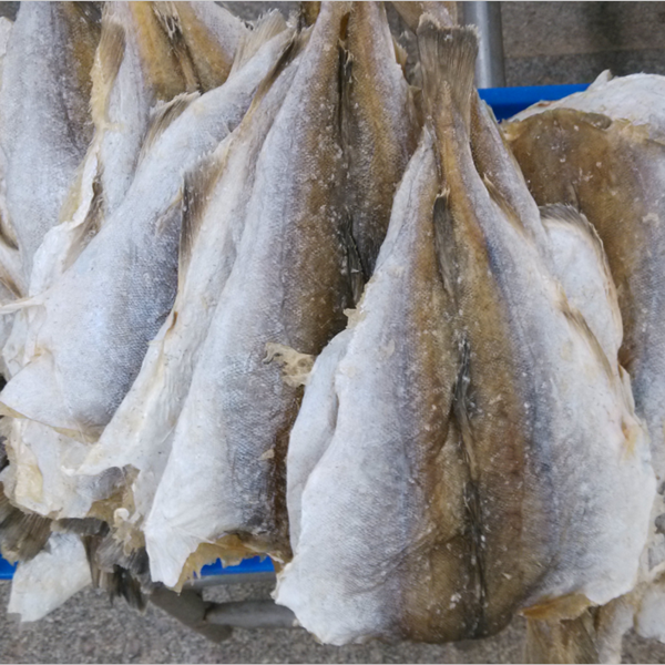 Dried fish trading companies