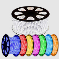 50m/roll 220v 240v Led 5050 Smd Rgb Led Strip Rope Light 60leds/m Waterproof Ip67 High Voltage Led Strip