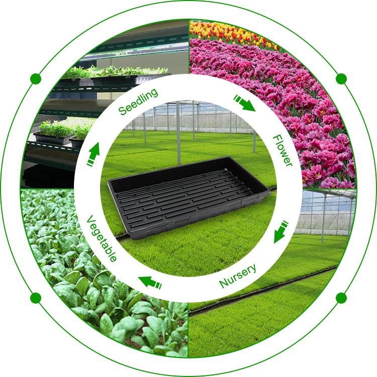 Садоводство 1020 Гидропоника семена растений прорастание поддоны для растений с крышками