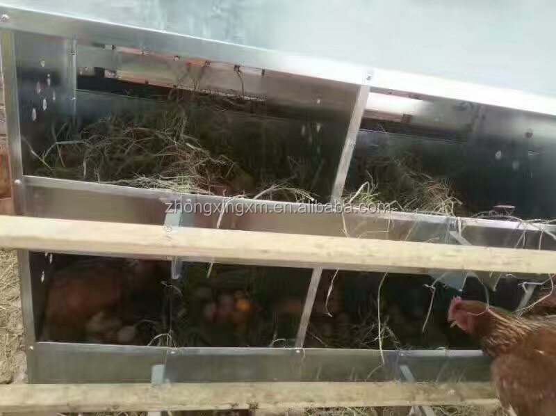 24 cells egg laying nest for layer chicken farm floor rearing chickens egg collector