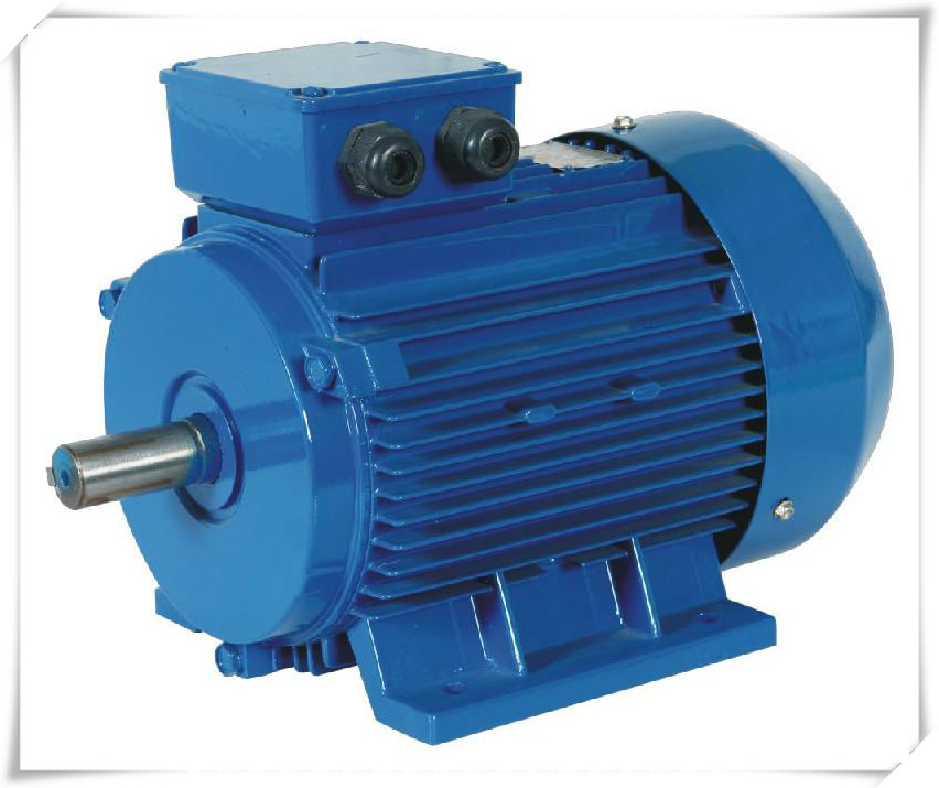 High Efficiency 240v High Torque Low Rpm Ac Electric