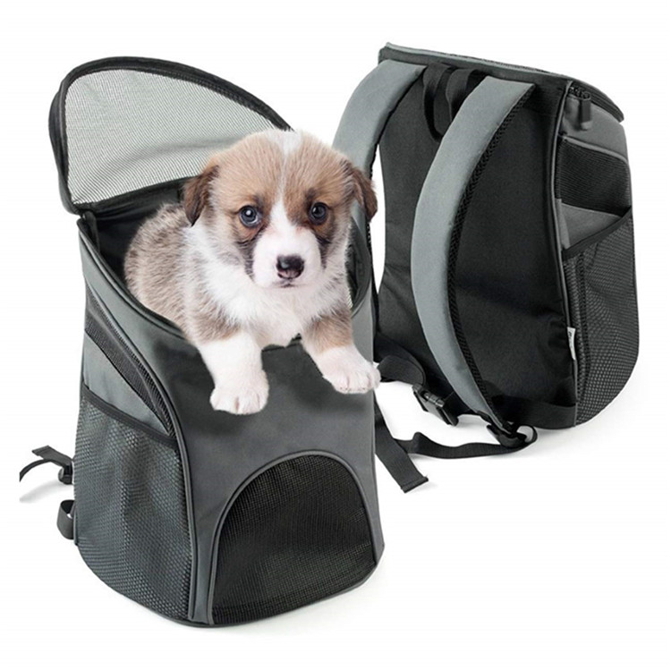 pet dog backpack 02.jpg