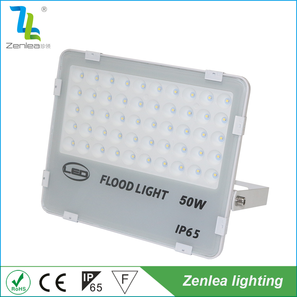 May new plastic casing 30w led emergency flood light for custom