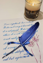 Writing Instrument Goose Feather Quill Pen Ink for Calligraphy