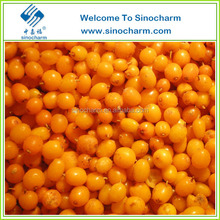 Sea Buckthorn Berries IQF Hippophae