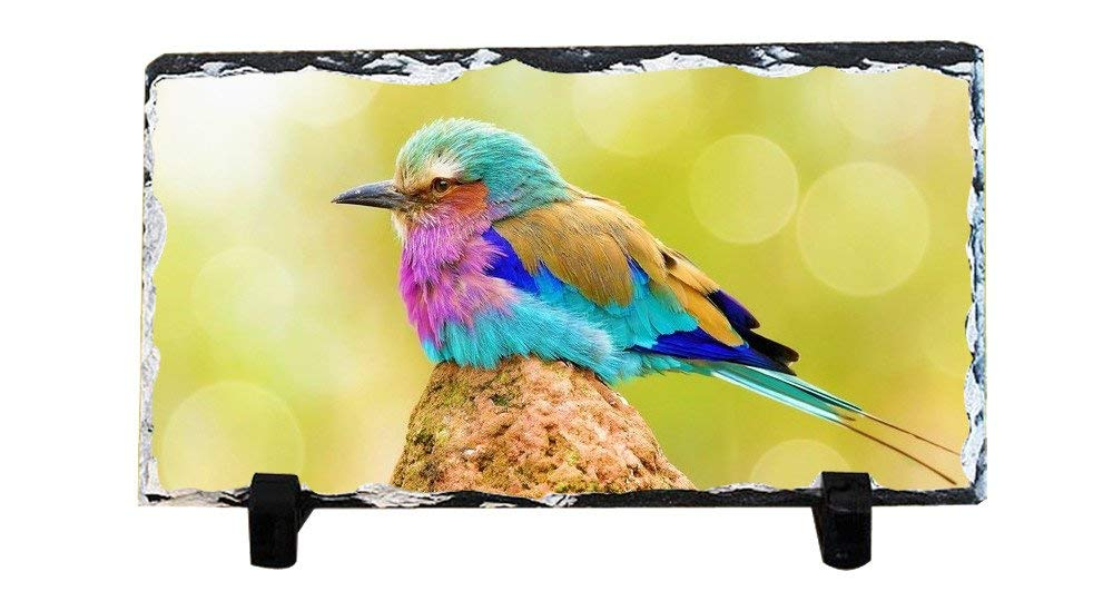 DKLZY Christmas Gifts Personalized Gifts Lilac-Breasted Roller Bird slate plaque are custom personalized to create a unique decoration suitable for any home
