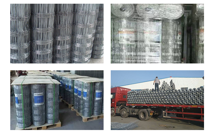 Hot dip galvanized fixed knot woven wire deer farm fence