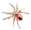 2019 Rose Gold Plated Jewelry Insect Spider Brooch Lapel Pin Big Animals Giant Safety Brooch