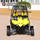 Hot sale new 4 wheeler 110cc gas electric 2 seat farm dune buggy for sale