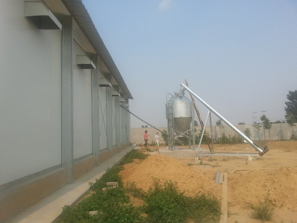 used poultry chicken cage for layer for kenya farms