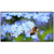 "SNOWHITE 110"" 16:9 SM110PFH 4K Nano fixed frame projection screen"