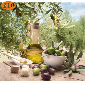 Food grade olive pomace oil/extra virgin greek olive oil bulk price