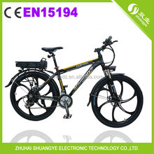 36V350W high quality racing electric bike