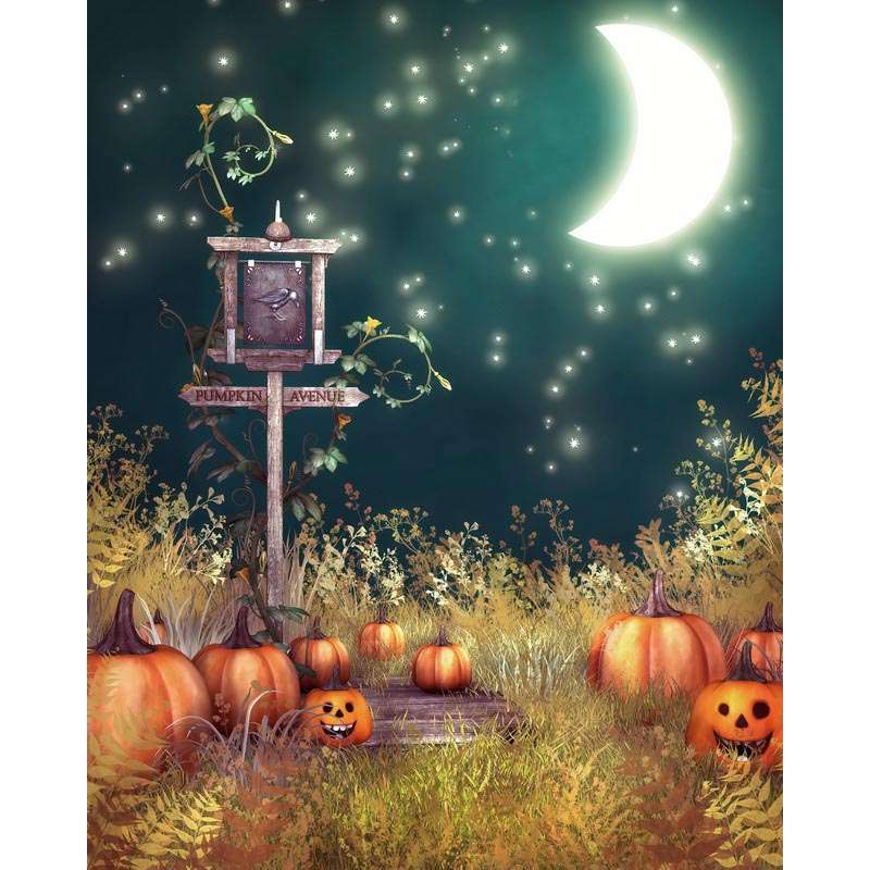 Cheap Decoration Items Fiber Optic Halloween Pumpkins Led Canvas