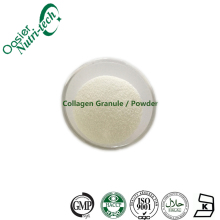 Raw Material Collagen Supplements Bulk Collagen Powder Collagen Peptide Protein