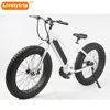 2018 Chinese Powerful Mid Drive Big Snow Tyre 26*4.9 e Cycle Fat Tire Electric Bike 48V 1000W