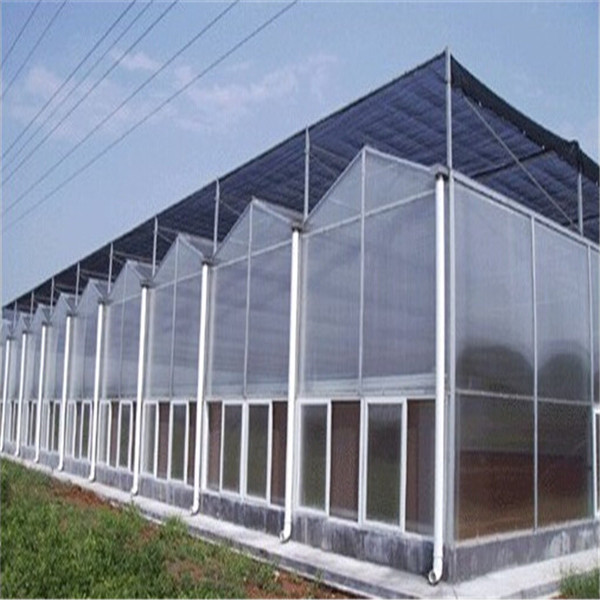 Fire Resistant Polycarbonate Clear Plastic Wall Panel
