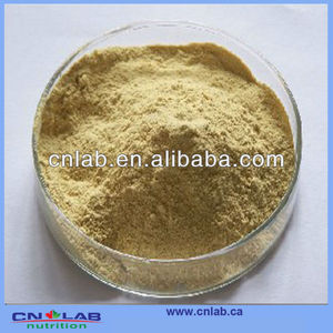 100% natural Gac Fruit Powder