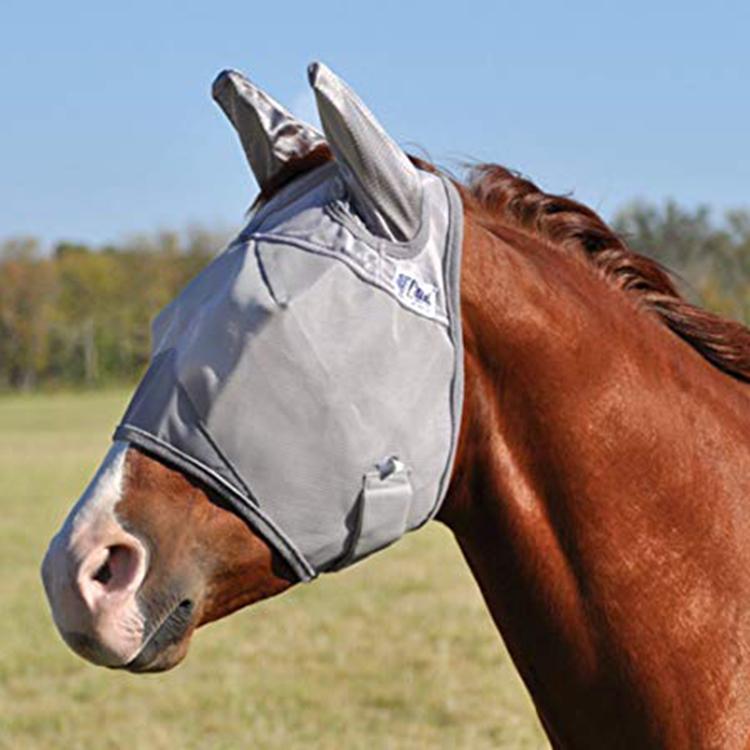 De neopreno de caballo campana botas