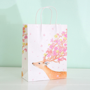 China factory fancy colorful patterns carrying bag kraft paper gift packaging bag