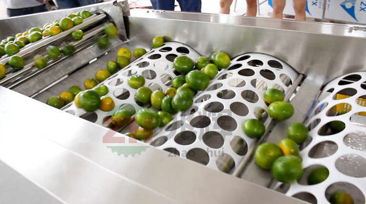 新品の状態フルーツアップル選別機アップル年生
