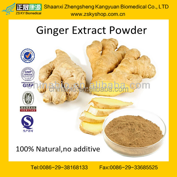 GMP manufacturer supply 100% natural and high quality Dried Ginger Extract powder